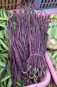 mogri vegetable