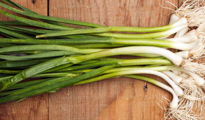 40 Recipes using Green Garlic